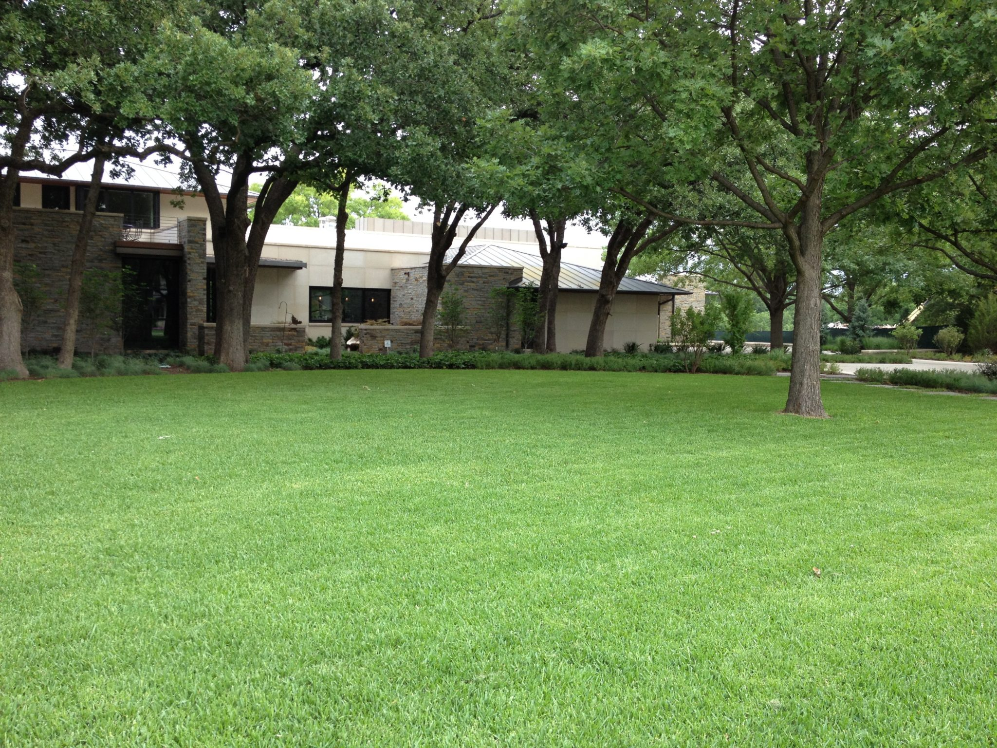 Landscape services in Plano
