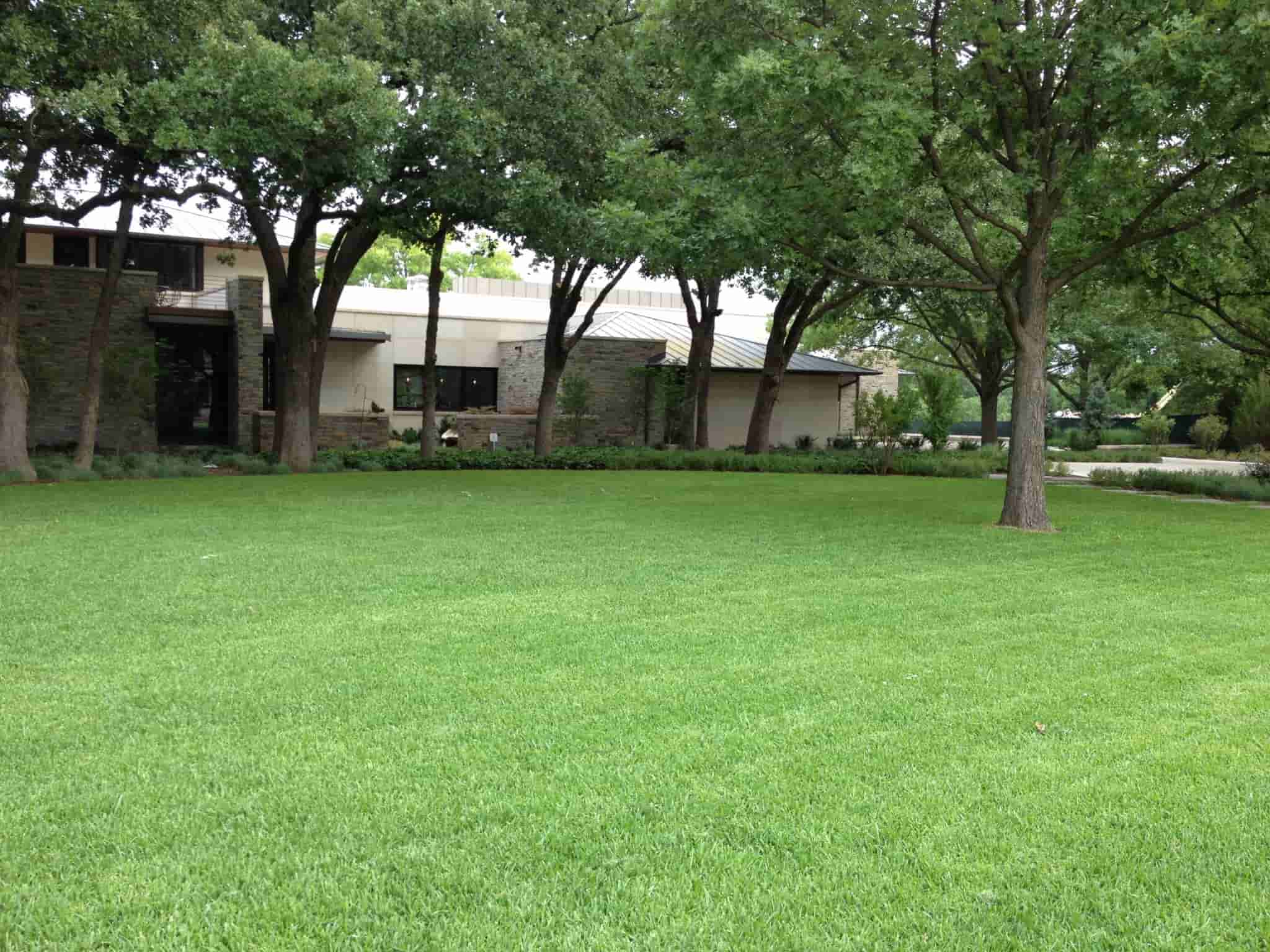 Commercial Landscaping Services at Plano